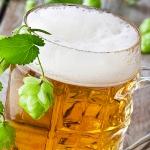 Alkohol pivo v pohári
